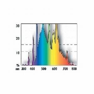 JBL SOLAR REPTIL JUNGLE T8 38 Watt (9000K)
