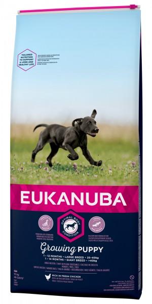 Eukanuba Junior große Hunde Huhn 12kg