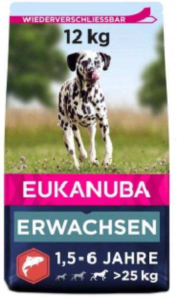 Eukanuba trockene Kroketten mit Lachs Große Hunde 12kg