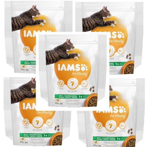 IAMS 5 X 800g Huhn für ausgewachsene Katzen