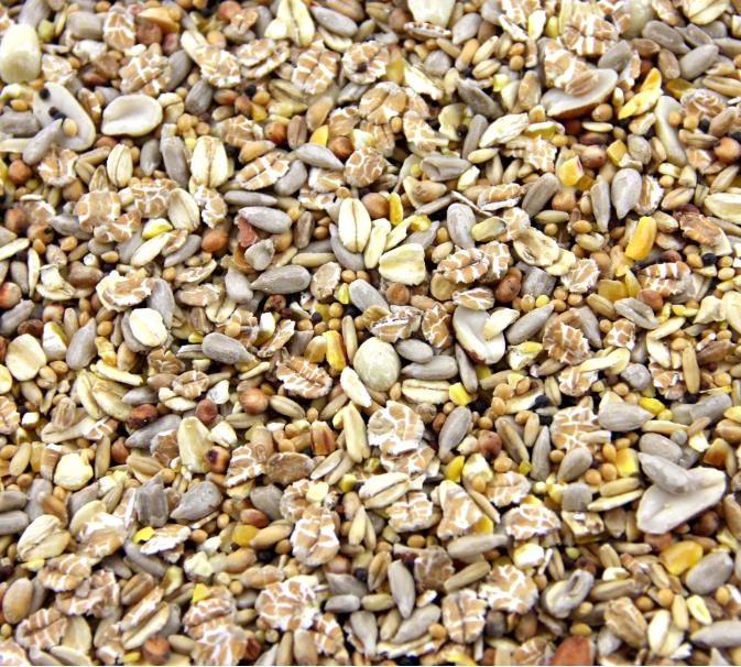 wittemolen-Wildvogelfutter-schalenlos-20kg