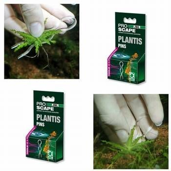 JBL Plantis Pflanzennadeln Doppelpack