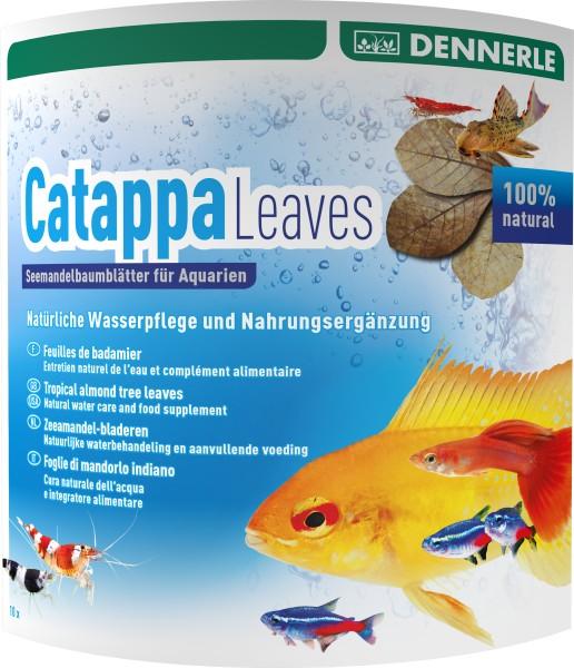 Dennerle Catappa Leaves 10 Stück